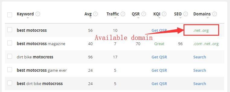 niche domain name
