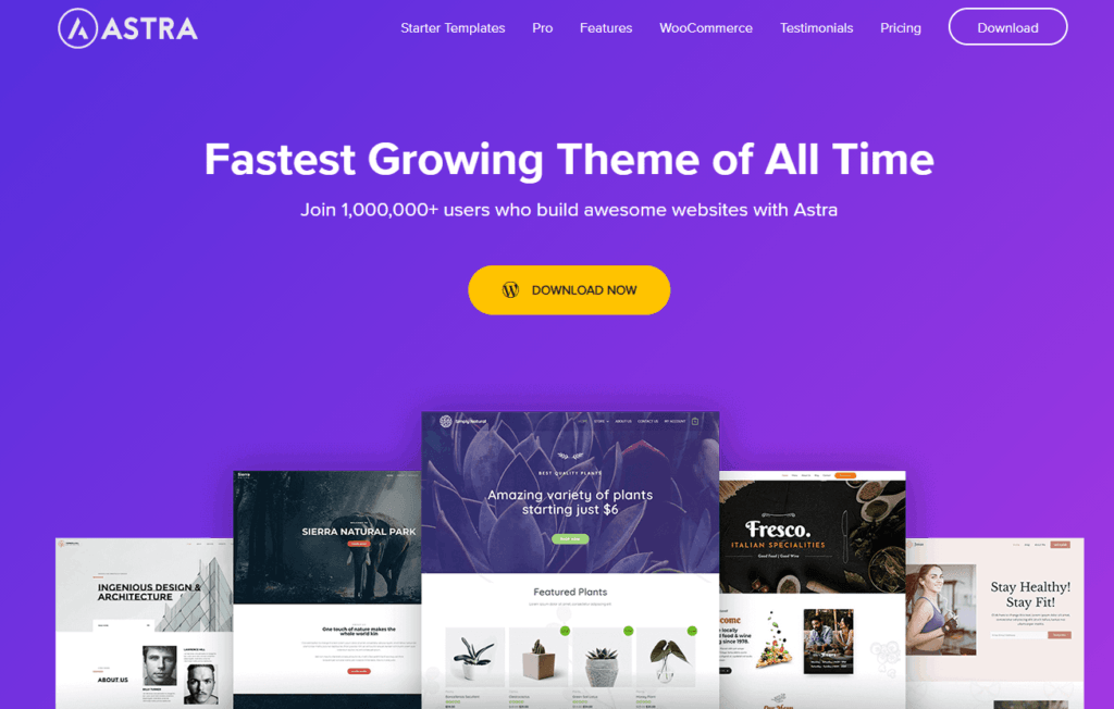 Best 6 WordPress themes 4